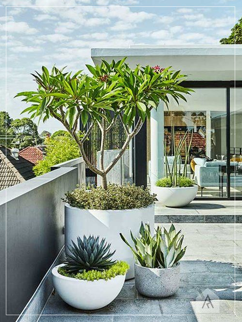 Modern Pots & Planters That Will Last For Years